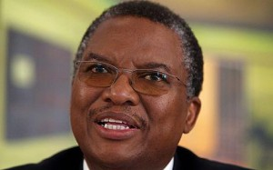 SOUTH AFRICA ELECTIONS COPE DANDALA